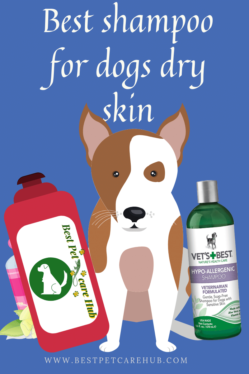 Best shampoo for dogs dry skin