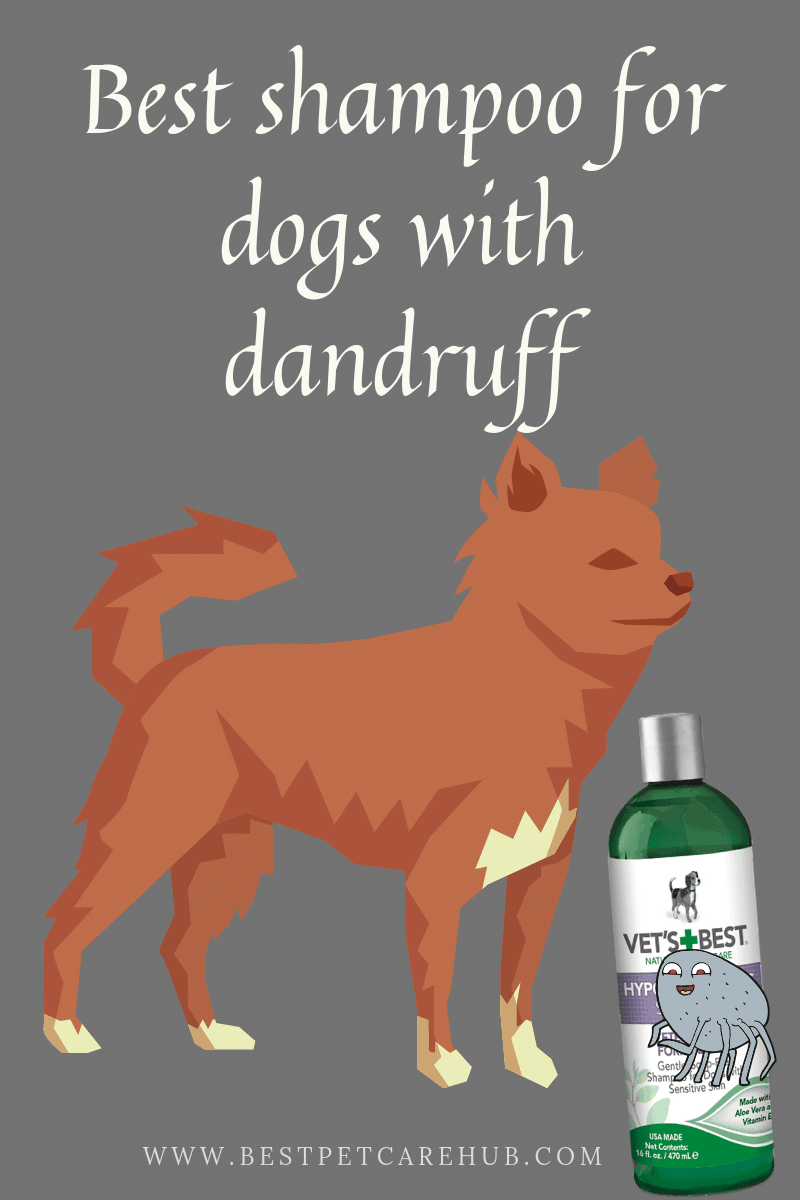 Best shampoo for dogs with dandruff