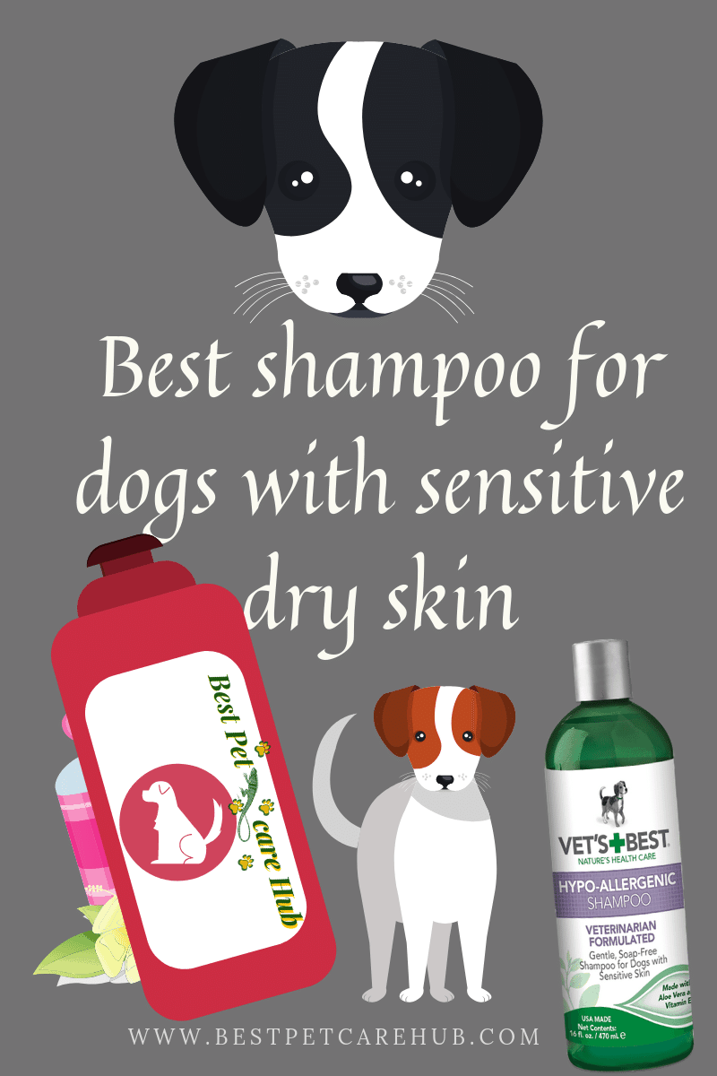 Best shampoo for dogs with sensitive dry skin